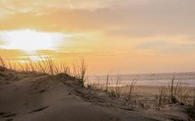Обои море, берег, дюны