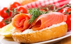 Обои помидоры, лосось, Хлеб
