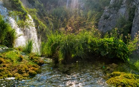 Обои трава, ручей, скалы, водопад, мох, солнечно, кусты