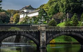 Обои деревья, река, Япония, Токио, фонари, мосты, кусты