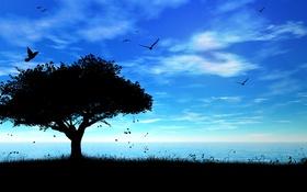 Обои море, пейзаж, птицы, природа, дерево, вектор, силуэт