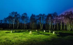 Обои трава, деревья, ночь, камни, поляна, освещение, Великобритания