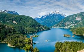 Картинка лес, деревья, горы, озеро, США, Diablo Lake