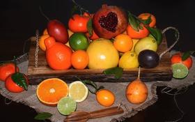 Обои апельсиы, мандарин, гранат, грейпфрут, лимоны, цитрусы, фрукты