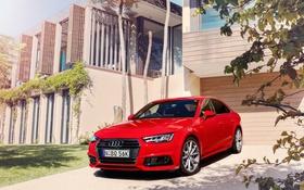 Обои Audi, ауди, Sedan