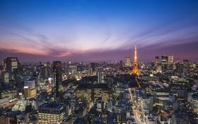 Обои сиреневое, столица, синее, Токио, освещение, Япония, вечер