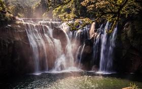 Картинка деревья, природа, водопад, красивое место