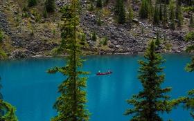 Обои деревья, озеро, камни, берег, лодка, Канада, Альберта