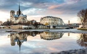 Обои остров Сите, Сена, Франция, Париж, собор парижской богоматери, река, пейзаж