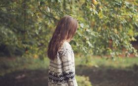 Картинка листья, девушка, дерево, шатенка