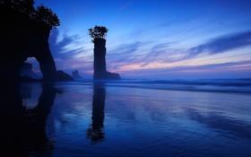 Обои море, деревья, ночь, камни, скалы, берег, силуэты