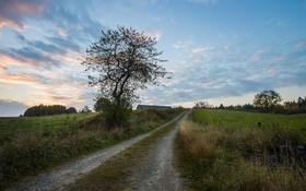Обои дорога, поле, вечер