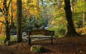 Обои осень, деревья, скамейка, парк, ручей, камни, мох