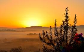 Обои трава, закат, горы, горизонт, силуэт, зарево