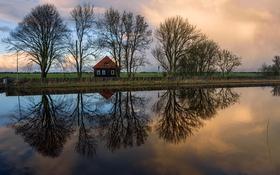 Обои поле, деревья, дом, отражение, река, вечер, Нидерланды
