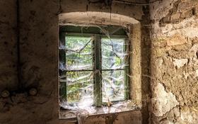 Обои фон, комната, окно