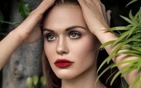 Обои взгляд, актриса, Holland Roden