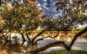 Обои осень, деревья, река, HDR, Испания, в воде, Zaragoza