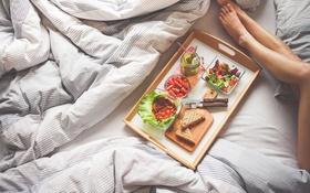 Обои грибы, завтрак, клубника, салат