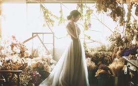 Обои девушка, свет, цветы
