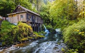 Обои лес, деревья, ручей, водопад, мельница, Вашингтон, США