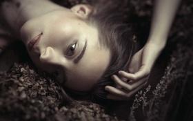Картинка взгляд, губки, прелесть, Ania, Ania Bieńkowska