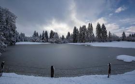 Обои забор, озеро, зима