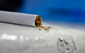 Обои макро, минимализм, сигарета, smoke