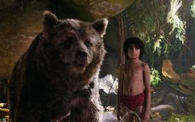 Обои друг, мальчик, медведь, Балу, Маугли, The Jungle Book, Книга джунглей