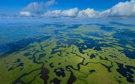 Обои море, облака, Флорида, США, дельта, Национальный парк Эверглейдс