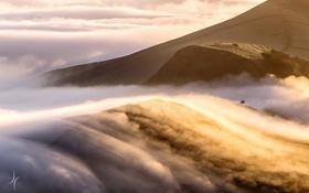 Обои горы, туман, утро, облока