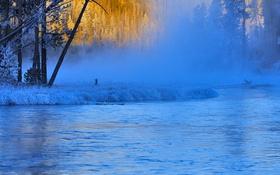 Картинка зима, иней, туман, река, Вайоминг, США, Yellowstone National Park