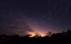 Обои небо, деревья, закат, ночь