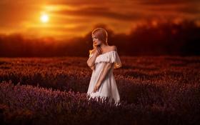 Картинка Girl, Model, Sunset, Beauty, Lavender, Field, Dress