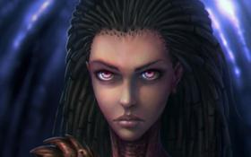 Обои лицо, starcraft, zerg, art, sarah kerrigan, queen of blades