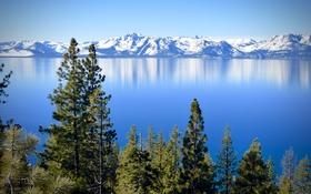 Обои деревья, горы, озеро, Калифорния, Невада, California, Nevada