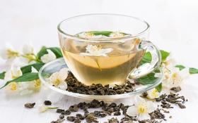 Обои чай, чашка, напиток, жасмин, зеленый чай