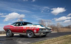 Обои 1971, Plymouth, плимут, Cuda, Hemi, Race Car