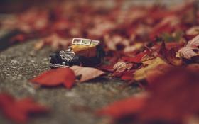 Обои осень, листья, игрушка, машинка