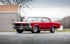 Обои красный, 1965, Pontiac, понтиак, Tempest, темпест