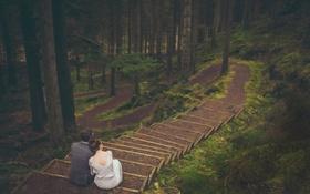 Обои лес, девушка, лестница, парень, влюбленные