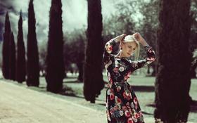 Обои лето, глаза, девушка, лицо, фон, волосы, платье