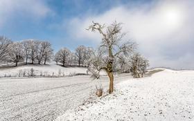 Обои зима, поле, снег