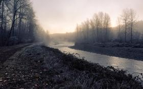 Обои туман, река, утро