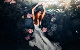 Картинка девушка, цветы, природа, гортензия