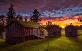 Обои поле, закат, домики