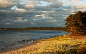 Обои камни, река, трава, облака, Эстония, лес, Lohusalu