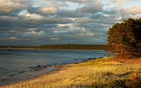 Картинка песок, лес, трава, облака, деревья, тучи, река