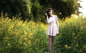 Картинка платье, ножки, прелесть, Diana