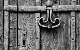 Обои wood, door, caller